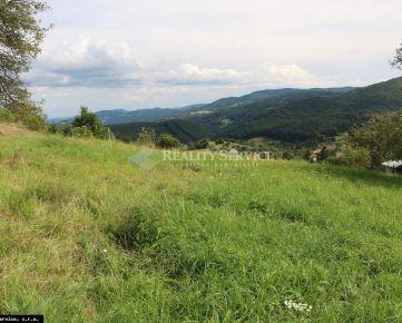 Na predaj Pozemok Veľké Pole, Žarnovica - P442