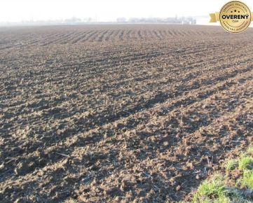 PREDAJ - Priemyselný pozemok 10.000 m2 - 2 km od Jaguar-Landrover