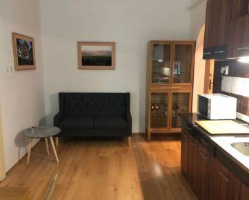 Prenájom veľkého 1 izbového bytu 48m2, Murgašová ul., Bratislava, Staré mesto
