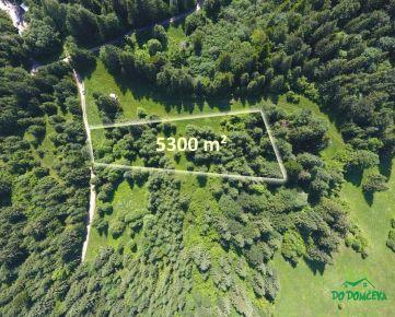 Pozemok pre Vašu nehnuteľnosť v lokalite Krpáčovo, obec Horná Lehota, okres Brezno