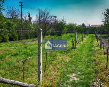 3263 Na predaj záhrada v Moči pri Dunaji - vhodná ako stavebný pozemok