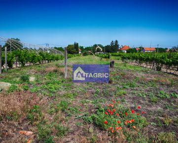 3260 Na predaj stavebný pozemok v obci Moča okres Komárno za výhodnú cenu!