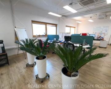Prenájom kancelárie 25,45 m2 Europalace, Žilina - Vlčince