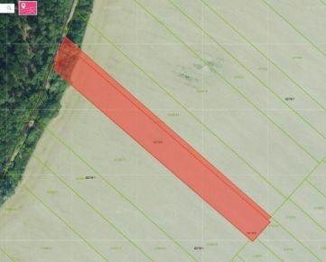 Predaj ornej pôdy, katastrálne územie Podunajské Biskupice, 8 632m2