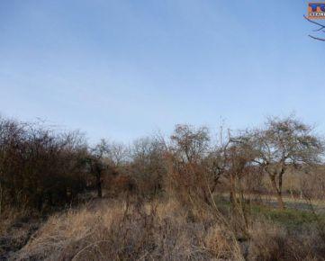 Pozemok, sad o výmere 1200 m2 v okrese Poltár. CENA: 6 000,00 EUR