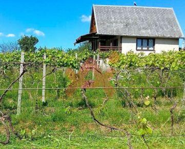 Predám rekreačný dom v lokalite Krupina (ID: 101143)