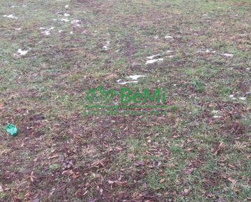 Pozemok v obci Belince na predaj 085-14-VIG