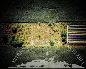 PREDAJ - POZEMOK (záhrada) - NITRA
