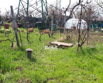 Na predaj záhrada s pivnicou Trnava,Nerudova ul.