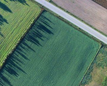 Kúpim ornú pôdu max. 150 km od Bratislavy