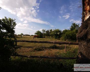 Ponúkame na predaj pozemok v obci Marianka, vstup na pozemok z hlavnej cesty, vhodný ako záhrada
