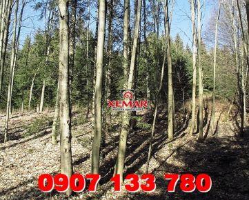 Predaj- Lesný pozemok 2,25ha - Zvolenská slatina