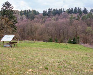 Rekreačný pozemok v obci Beluša - časť Rybníky