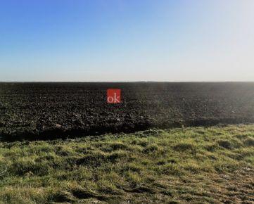 Orná pôda Rusovce na predaj