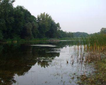 Predaj vodnej a trávnatej plochy 6,8 ha v Gajaroch