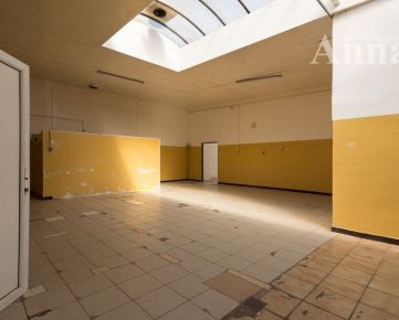 Sklad (230 m2) - Údernícka ul.