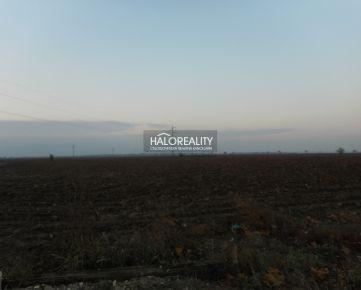 HALO REALITY - Predaj, pozemok 13642 m2, Trnava