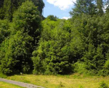 Bystrička na predaj lesné pozemky - TOP ponuka