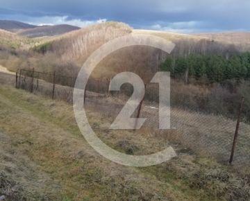 CENTURY 21 Realitné centrum ponúka -Pozemok v obci Lúčina - znížená cena