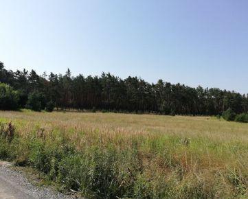 Posledný stavebný pozemok pod lesom - Studienka