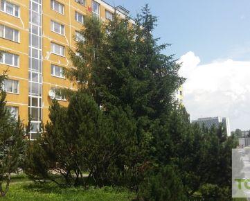 TOP Living: 2-izb.byt s lodžiou-pekný výhľad-pokojná lokalita-Podlavice – BB