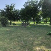 Záhrada 2850m2