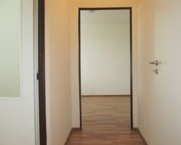 Veľký Krtíš - 1 - izbové byty v strede mesta na prenájom