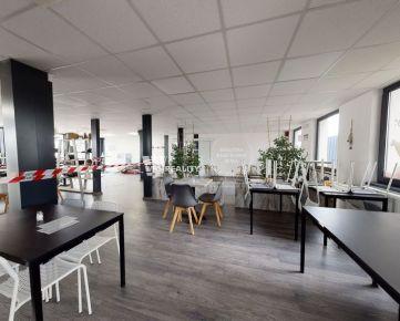 Obchodno - kancelárske priestory (250 m2) s veľkým parkoviskom na prenájom Kamenná - Žilina