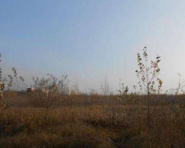 Predaj staveb. pozemku 10.000 m2 na šport a voľný čas v Petržalke