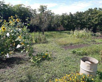 Záhradka na Nerudovej ulici