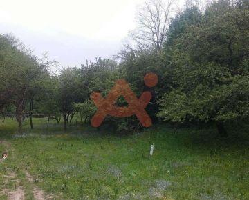 Predám pozemok v lokalite Zádubnie (ID: 100301)