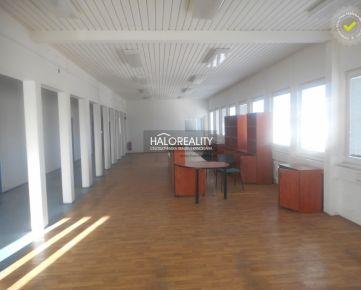 HALO REALITY - Prenájom, prevádzkový priestor a skladové haly, Trnava - EXKLUZÍVNE HALO REALITY