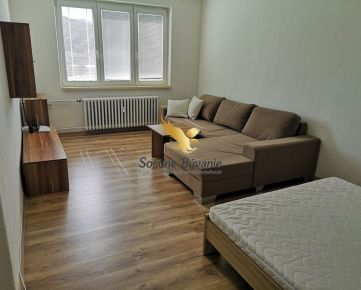 Veľký 1 izbový byt vo vyhľadávanej lokalite