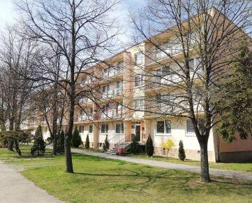 Dvojizbový veľký byt v Skalici