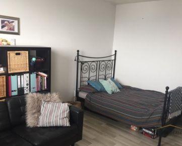 Prenájom pekný 1 izbový byt Jungmannova ulica, Bratislava V Petržalka