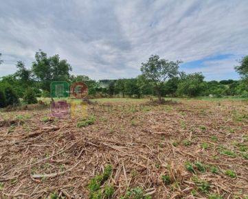 Predaj pozemky- 7945 m2, a 7-izb, RD, 230 m2, Nitra-Čermáň -