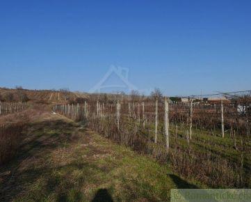 Stavebný 22 árový pozemok pod Karpatmi – Vinosady , 20 km od Bratislavy