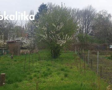 REZERVOVANÉ! Odstúpenie prenájmu záhrady 300 m2, Mierová kolónia ID1026