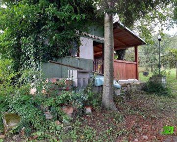 Veľká Záhrada 1007 m2, s chatkou, Kavečany Vitalina