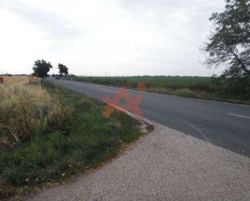 Predám investičný pozemok v lokalite Trnava (ID: 101428)