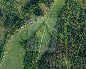 Pozemok pre rekreačnú chatku / 1658 m2 / Gbeľany