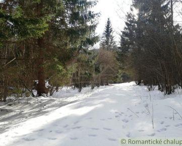 Pozemok na chatu uprostred lesa v Nízkych Tatrách