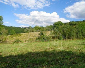 NOVÁ CENA Priestranný pozemok na polosamote pri lese vhodný na výstavbu chalupy v blízkosti lesa pri Čakanovciach